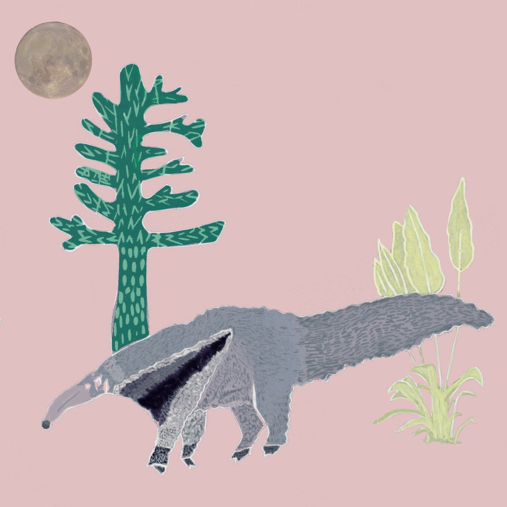 The Anteater Wallpaper- Pink