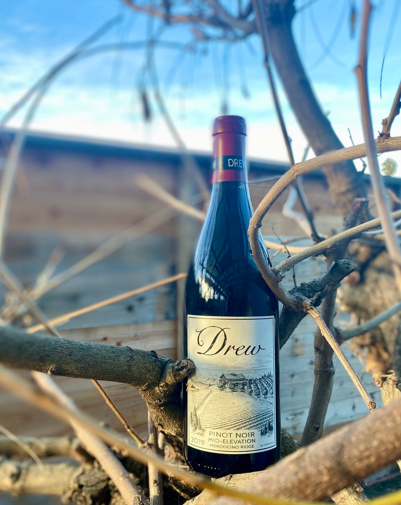 The Drew Family Pinot: The Apple of our Eye