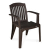 Nilkamal Premium Chair CHR2136 (Weather Brown)