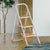 Nilkamal Delta 3step Ladder White Orange
