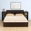 Nilkamal Harrier 01 Queen Bed (Wenge)