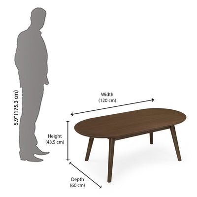 Nilkamal Zoey Coffee Table (Dark Walnut)