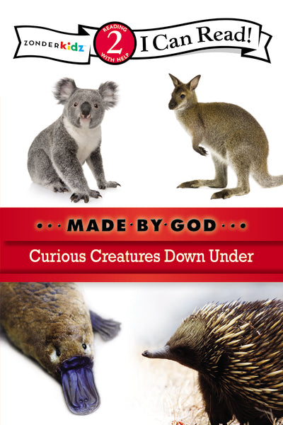 Curious Creatures Down Under: Level 2