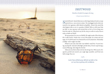 Load image into Gallery viewer, Devotions from the Beach: 100 Devotions