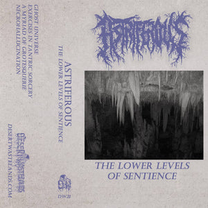 "Astriferous ""The Lower Levels of Sentience"" Cassette Tape"