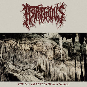 "Astriferous ""The Lower Levels of Sentience"" CD"