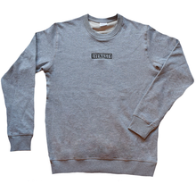Load image into Gallery viewer, 'DYENASTY' GREY MARLE CREW NECK