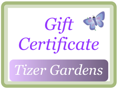 Tizer Gardens Gift Certificates