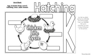 Hatching Chicks Flip Flap Book® | Distance Learning
