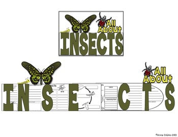 Insects Flip Flap Book®