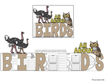 All About Birds Flip Flap Book®