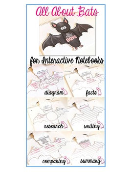 All About Bats Interactive Notebooks