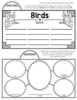 Birds Tab-Its® | Distance Learning