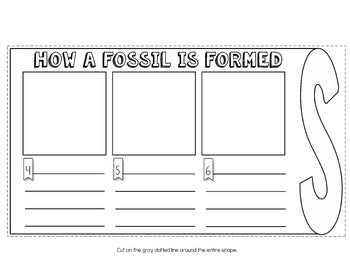 Fossils Flip Flap Book® | Distance Learning