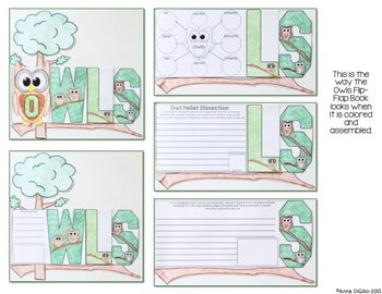 Owls Flip Flap Book® | Distance Learning