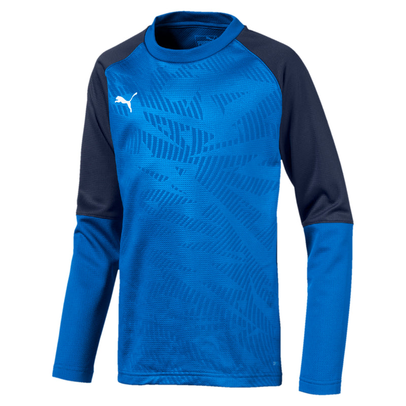 CUP Training Sweat Core Jr pulóver Electric Blue Lemonade-Peacoat - Teamsport & Lifestyle