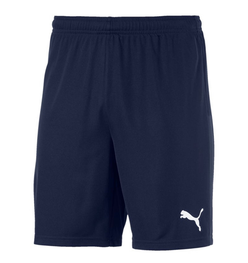teamGoal 23 knit Shorts Puma Black