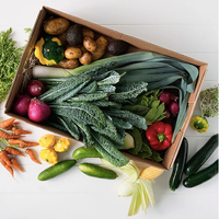 Large Veg Box