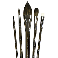 Royal Brush Zen Watercolour Pointed Oval 5PC Set SH