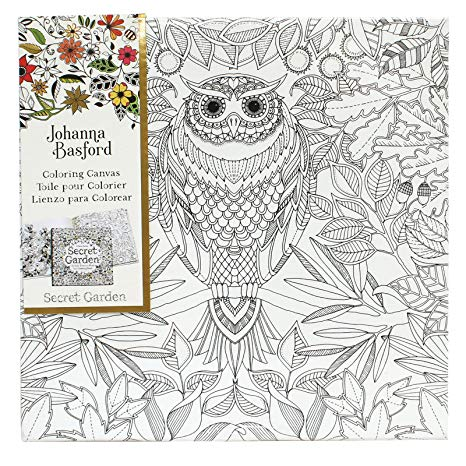 Johanna Basford Coloring Canvas Secret Garden Owl 12x12