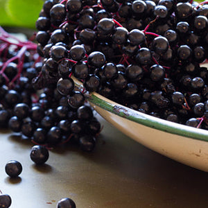 ELDERBERRY PRESERVES