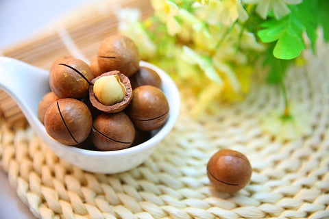 Health Benefits Of Macadamia