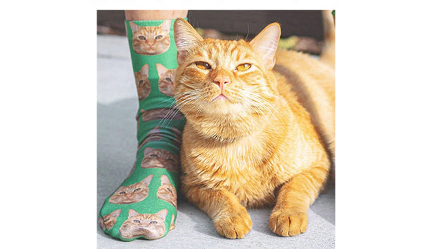 How to Make Custom Cat Socks? - Make your Cat a Superstar