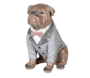 Dressed Bulldog