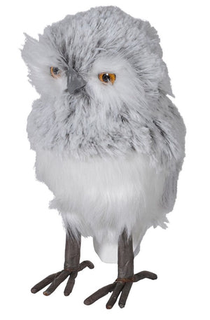 Grey & White Owl