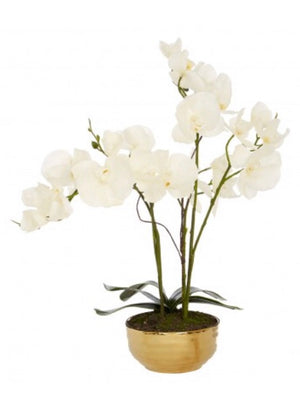 White Faux Orchids in Gold Pot
