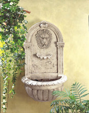 Load image into Gallery viewer, Lion Head Wall Fountain