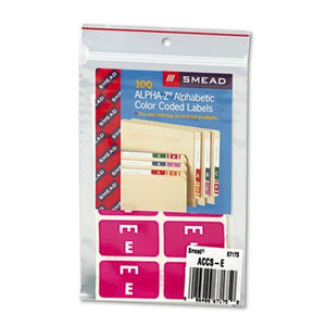 Alpha-Z Color-Coded Second Letter Labels, Letter A, Red, 100/Pack [Set of 2] Label/Color: Letter E, Purple