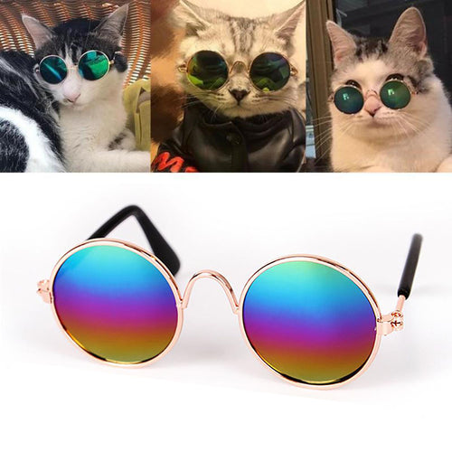 Dog Cat Glasses