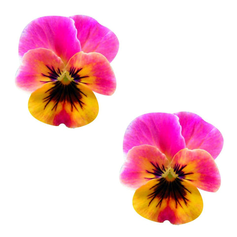 Freaking Awesome Flower Pansy Nipztix Pasties, Freaking Awesome Nipple Pasties - NevaNude