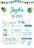 Blue and green bunting first birthday milestone poster/board/sign nz