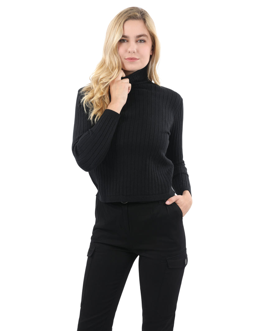 Roxbury Ribbed Turtleneck Sweater - Black