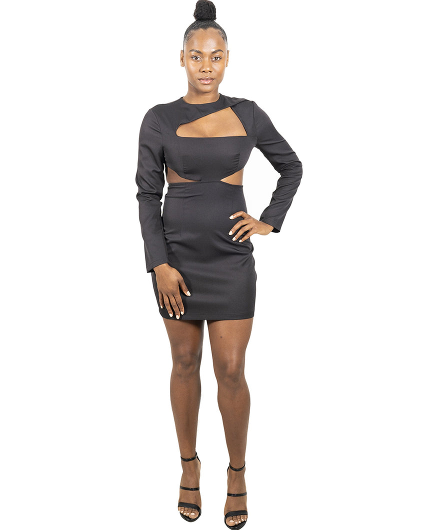 Lania Cutout Long Sleeve Mini Dress