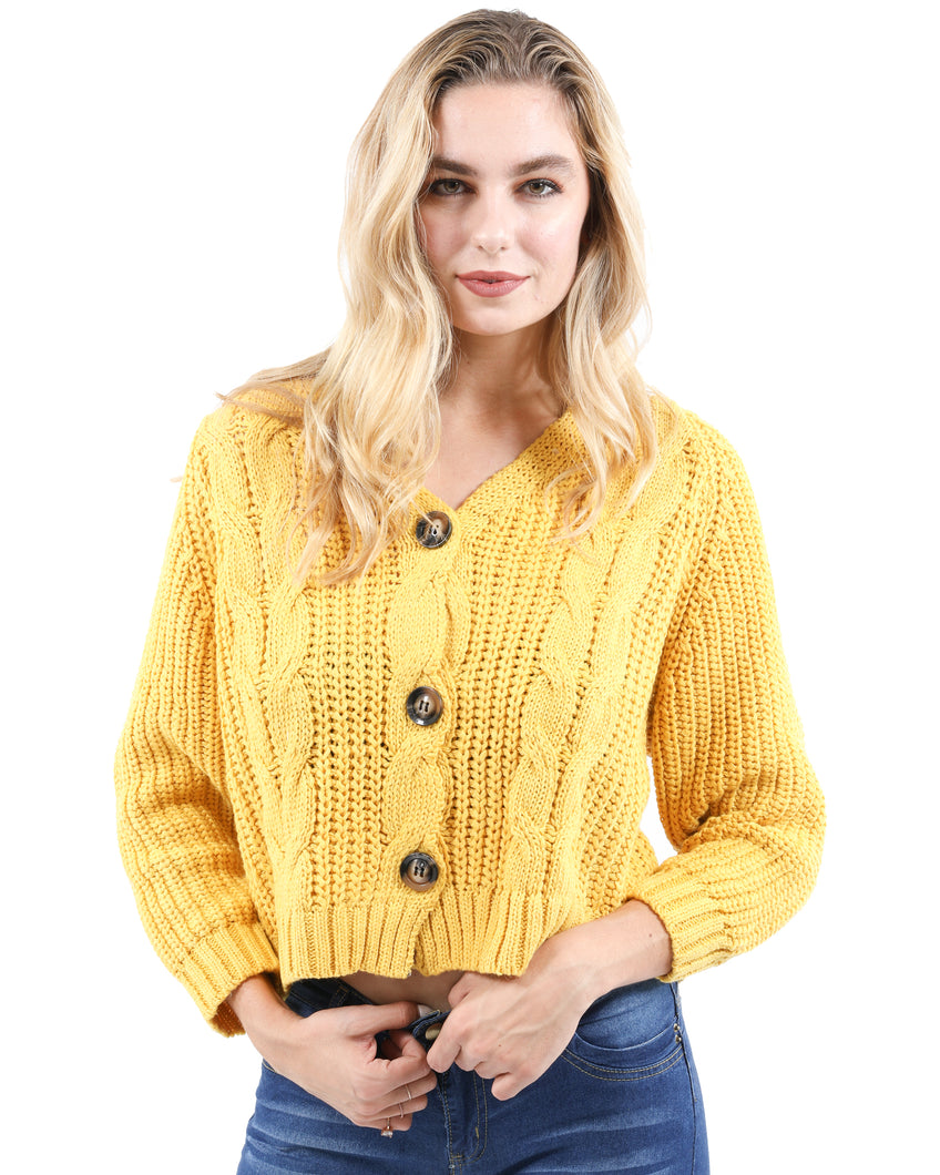 Brighton Button-Up Cableknit Sweater