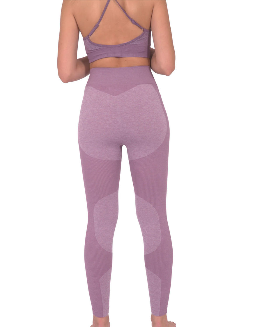 Megara Seamless Legging with Striped Panels - Purple