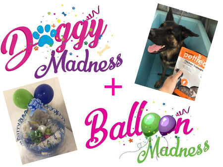 Gift Balloons & Doggy Things