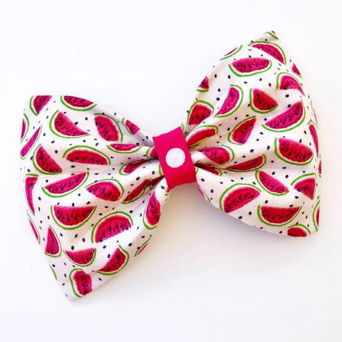 Watermelon Wonderland Bow Tie