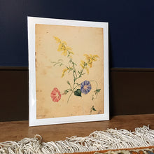 Load image into Gallery viewer, Emily Cole Goldenrod & Morning Glories Botanical Watercolor 11x14 Print