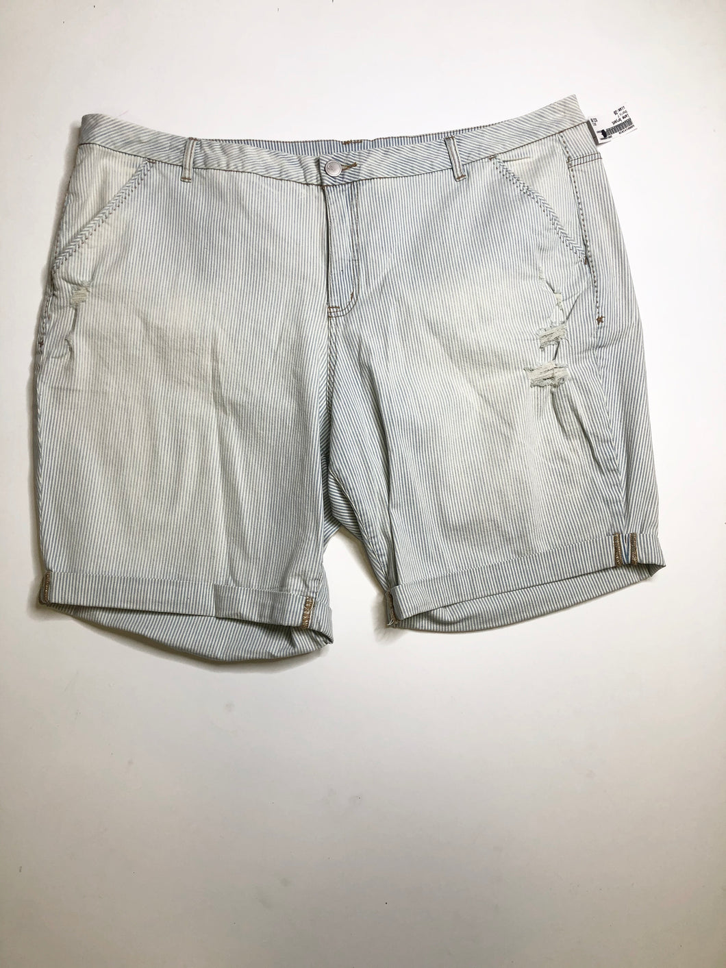 Lane Bryant shorts SIZE 26