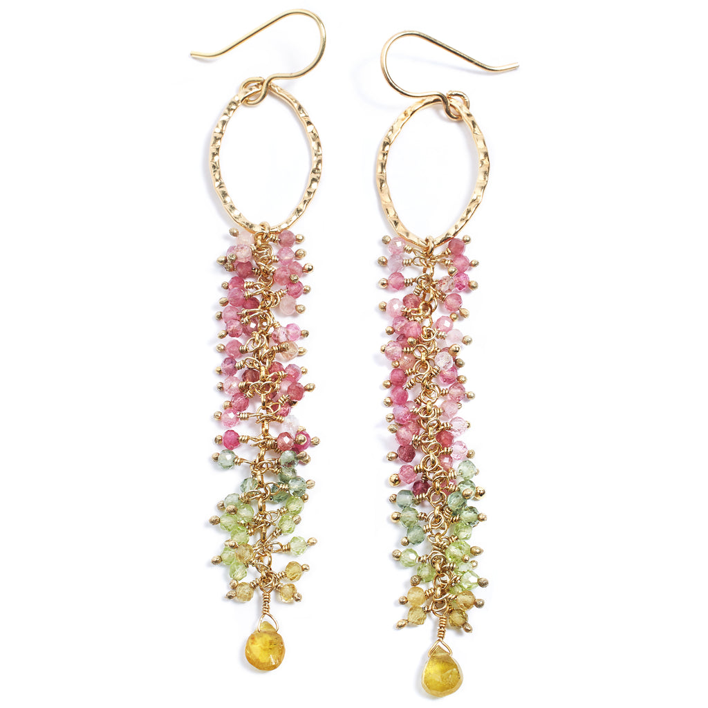 Luchi Multi stone Earrings