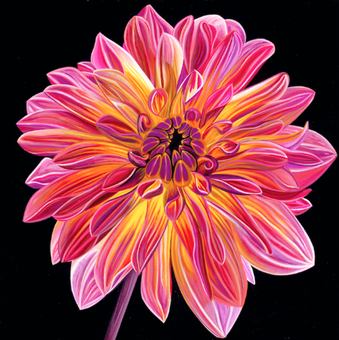 Chrysanthemum - Michael Godard Art Gallery
