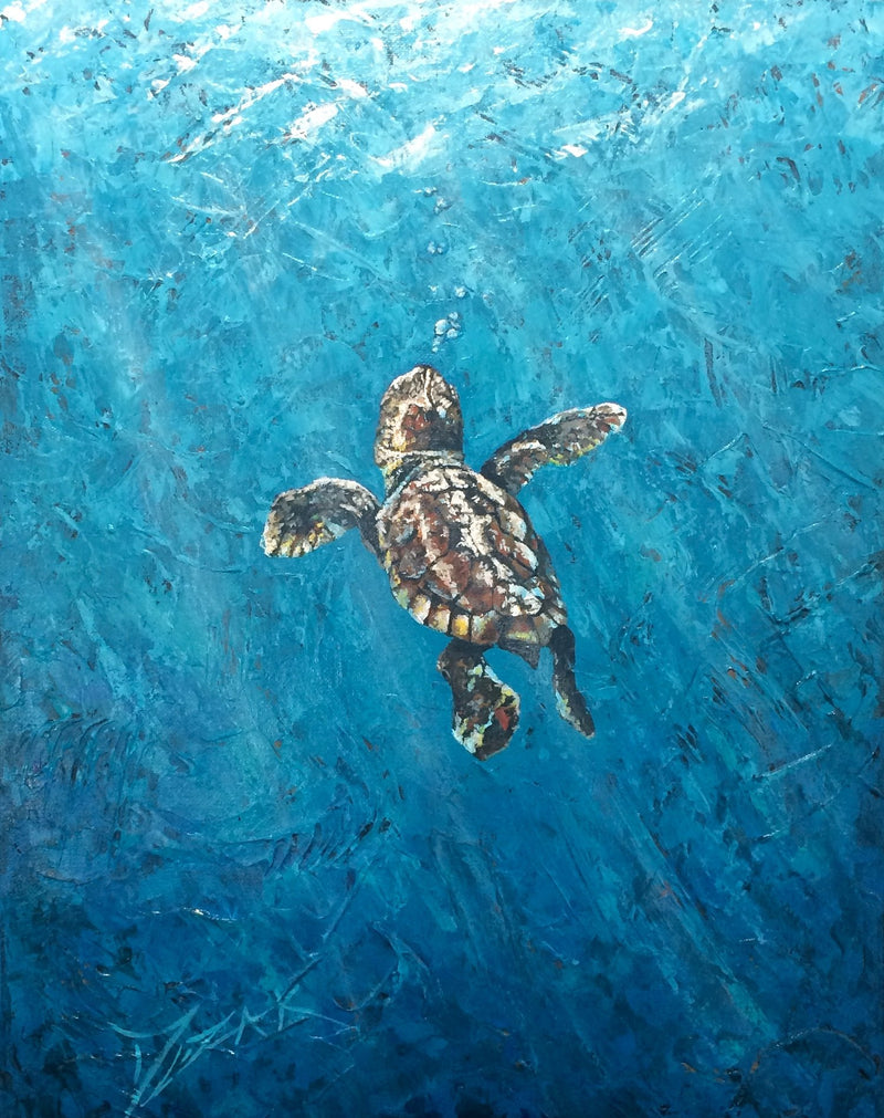 Baby Sea Turtle - Michael Godard Art Gallery