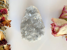 Load image into Gallery viewer, Celestite