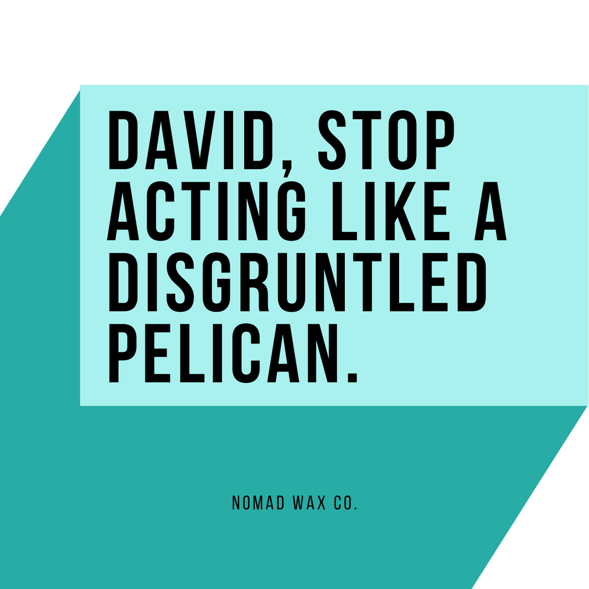 Stop Acting Like a Disgruntled Pelican - Schitt's Creek - Vegan Scented Soy Candle
