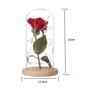 Beauty and the Beast Red Rose Valentine's Gifts-Hykoshop