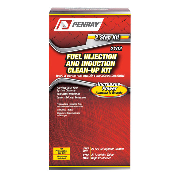 Penray 2-Step Fuel Injection & Induction Clean-up Kit